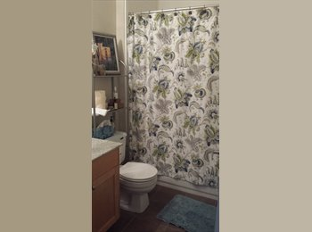 EasyRoommate US - Bright location in San Ramon/Dublin Room for rent - San Ramon, Oakland Area - $1050