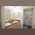 EasyRoommate US Your own room and bathroom - San Marcos - $ 575 per Month(s) - Image 1