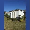 EasyRoommate US Santa Monica Room for Rent - Santa Monica, West LA, Los Angeles - $ 900 per Month(s) - Image 1