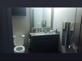 EasyRoommate US - Very nice 1 bedroom available - Oak Lawn, Dallas - $625