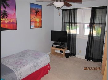 EasyRoommate US - 1 bedroom for rent - Chesapeake, Chesapeake - $400