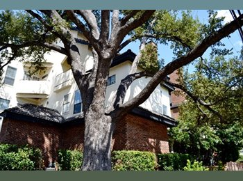 EasyRoommate US - UT North Campus Condo for Spring 2015 - UT Area, Austin - $700
