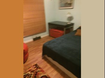 EasyRoommate US - Room in Great Bridge Area - Chesapeake, Chesapeake - $600