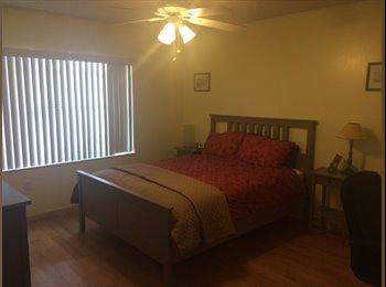 EasyRoommate US - Room available - Sunrise, Ft Lauderdale Area - $650