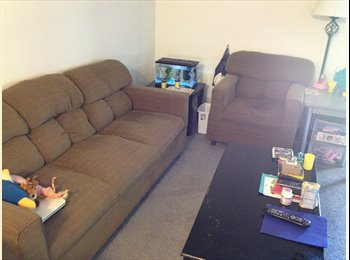 EasyRoommate US - Furnished one bedroom apartment avialiable - Manhattan, Other-Kansas - $545