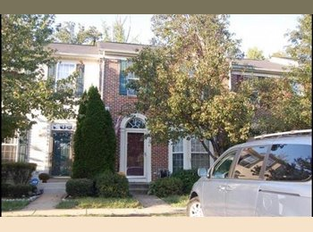 EasyRoommate US - Lorton, VA -- Spacious Basement w/ Full Bath - Alexandria, Alexandria - $1000