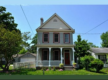 EasyRoommate US -  Seeking perfect roommate to share a big house - Norfolk, Norfolk - $600