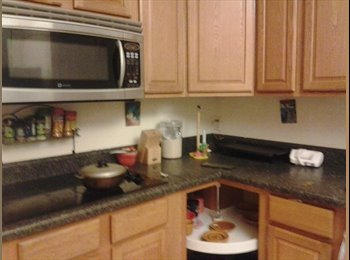 EasyRoommate US - room for rent in my pool house  - Kissimmee, Other-Florida - $500