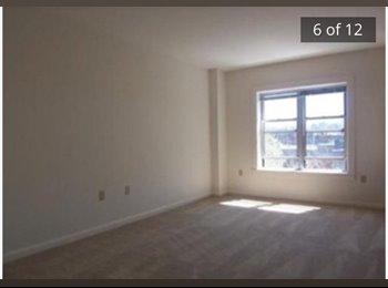 EasyRoommate US - 1 bed/ 1 bath - Fenway-Kenmore, Boston - $1500