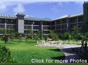 EasyRoommate US - Waterfront Apartments at Kahului - Maui, Maui - $750