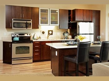 EasyRoommate US - Young Professional needs a Roommate - St Paul West, Minneapolis / St Paul - $937