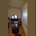 EasyRoommate US spacious rooms to rent - Volusia County, Orlando Area - $ 500 per Month(s) - Image 1