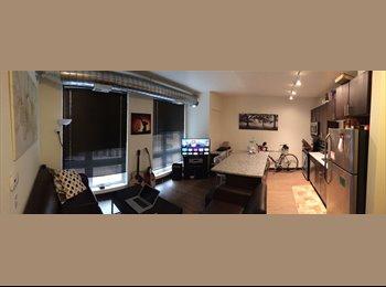 EasyRoommate US - Beautiful one bedroom in the heart of dinkytown! - University, Minneapolis / St Paul - $1030
