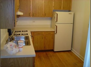 EasyRoommate US - A great apartment in the Southport Corridor - Chicago, Chicago - $1000