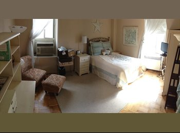 EasyRoommate US - Large + Beautiful BR for rent in my Stuy Town apt! - East Village, New York City - $1650