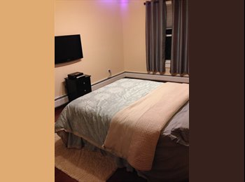 EasyRoommate US - Clean quiet room - Bridgewater, Central Jersey - $490