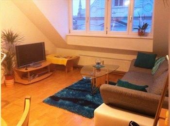 EasyWG AT - Mitbewohnerin in schöner 2-er WG gesucht - Innenstadt, Graz - €330