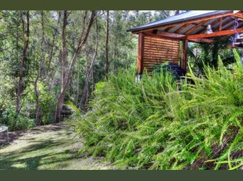 EasyRoommate AU - Rooms to rent with quiet bush outlook - Cherrybrook, Sydney - $1127