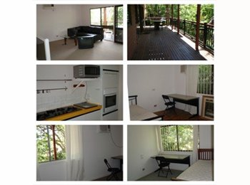 EasyRoommate AU - beautiful single room for rent in Taringa - Taringa, Brisbane - $110
