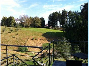 Appartager BE - 1 chambre avec sdb privative à Landenne - Namur, Namur-Namen - €500