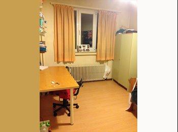 Appartager BE - kot à louer - Ixelles-Elsene, Bruxelles-Brussel - €395