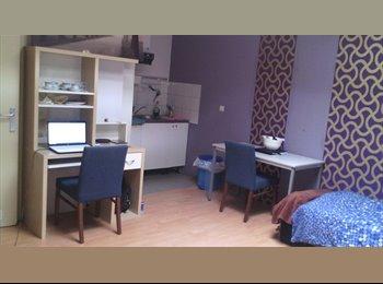 Appartager BE - Studio a louer - Schaerbeek Schaarbeek, Bruxelles-Brussel - €525
