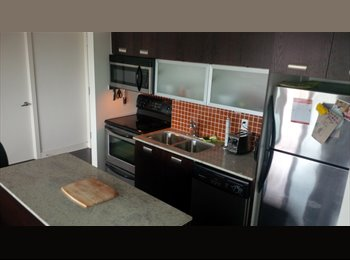 EasyRoommate CA - Beautiful condo in Liberty Village - King West Village, Toronto - $900