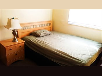 EasyRoommate CA - Furnished 1 bedroom. 3 Minute Walk to fanshawe - London, South West Ontario - $450