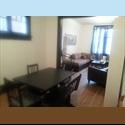 EasyRoommate CA Very Nice Glebe Home Near Dow's Lake - The Glebe, Ottawa - $ 475 per Month(s) - Image 1