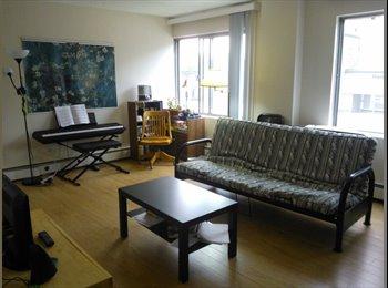EasyRoommate CA - Single bedroom in convenient Oliver location - Central, Edmonton - $730