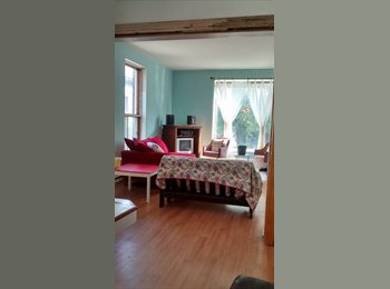 EasyRoommate CA - Looking for roommates in unique 12 and a half - Centre Ville, Montréal - $425