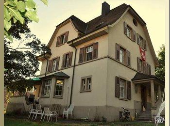 EasyWG CH - Mitbewohnerin gesucht - Altstadt Grossbasel, Basel Stadt / Bâle - CHF330