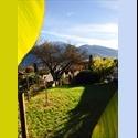 EasyWG CH Coinquilina per un 4.5 locali a Muralto (LOCARNO) - Distretto di Lugano - CHF 750 par Mois - Image 1