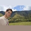 CompartoApto CO - Ryan - 29 - Professional - Male - Medellín - Foto 1 -  - COP$ 400000 por Mes(es) - Foto 1