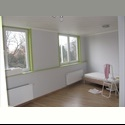 EasyKot EK looking for a room in the center of Leuven?? - Centrum, Leuven-Louvain - € 440 per Maand - Image 1