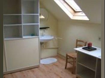 EasyKot EK - Mooie (gemeubileerde) kamer in hartje Antwerpen - Haringrode - Zurenborg, Antwerpen-Anvers - €320