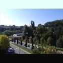 EasyPiso ES ALQUILO 2 HABITACIONES - Centro, Pamplona, Navarra - € 250 por Mes - Foto 1