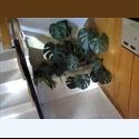 EasyPiso ES 400€/mes, amueblado, soleado, 60 m, muy tranquilo - Villaverde, Madrid Ciudad, Madrid - € 400 por Mes - Foto 1