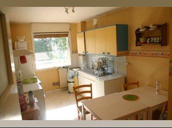 Appartager FR - Colocation à 3 : 1 chambre libre, tout confort - Dijon, Dijon - €385