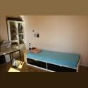 Appartager FR chambre meublée simple - 6ème Arrondissement, Marseille, Marseille - € 520 par Mois - Image 1
