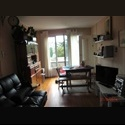 Appartager FR H63ans propose chambre en co-loc proche université - La Cépière - Bagatelle, Toulouse, Toulouse - € 350 par Mois - Image 1