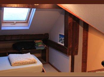 Appartager FR - Chambre dans maison - Jarville-la-Malgrange, Nancy - €200