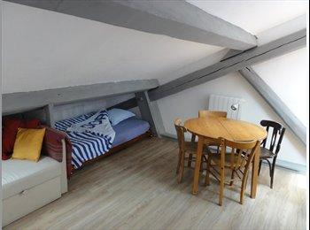 Appartager FR - Studio meublé et équipé pour étudiant - 6ème Arrondissement, Lyon - €550