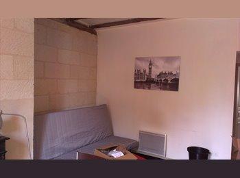 Appartager FR - Quartier HALLES Courteline Colocation meublées - Tours, Tours - €400