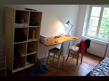 Appartager FR - Chambre meublée, ±17m2, à la Krutenau - Krutenau, Strasbourg - €375