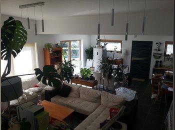 Appartager FR - Cherche colocataires sur Landerneau - Landerneau, Brest - €380