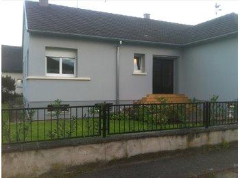 Appartager FR - recherche colocatrice - Colmar, Colmar - €550