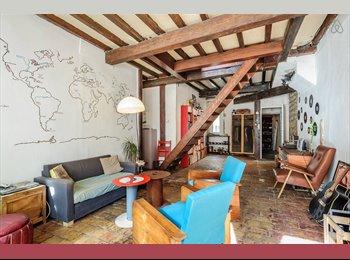 Appartager FR - Cherche colocataire, appartement tout équipé Lyon - 2ème Arrondissement, Lyon - €650