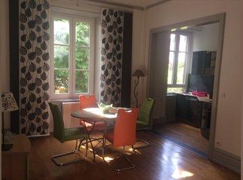 Appartager FR - Bel appartement meuble strasbourg Krutenau - Krutenau, Strasbourg - €1200