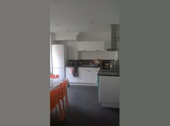 Appartager FR - Colocation à 3 - Hyper-centre, Grenoble - €400